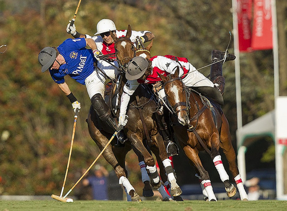 Ultimate Polo Experience