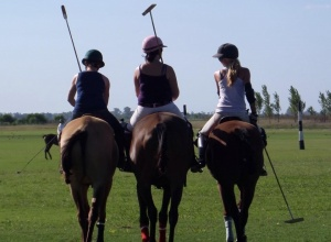 Have a look at our Emily's blog 'How to learn to play polo' and get inspired how to train yourself.