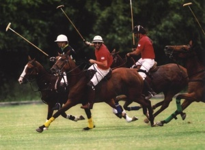 Palo Alto Polo now also gives classes in England - Join us there!