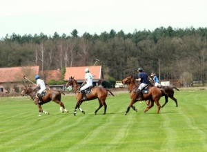 Palo Alto Polo travels to Europe for European season
